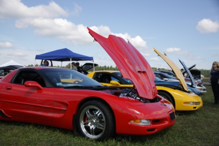Name:  Corvette Row.JPG Views: 46 Size:  79.6 KB