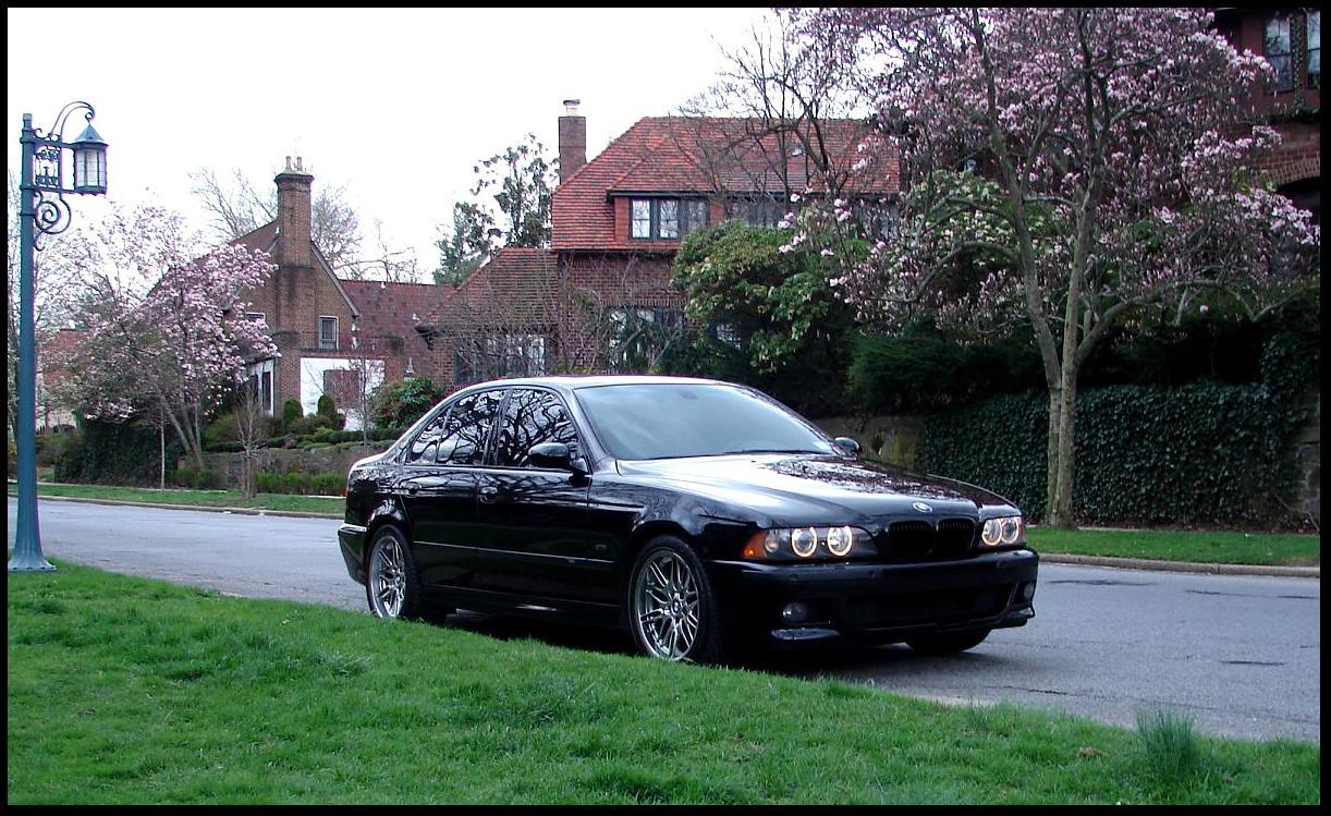 FS: 2001 BMW M5 (NYC)-detail_day_2_3.jpg