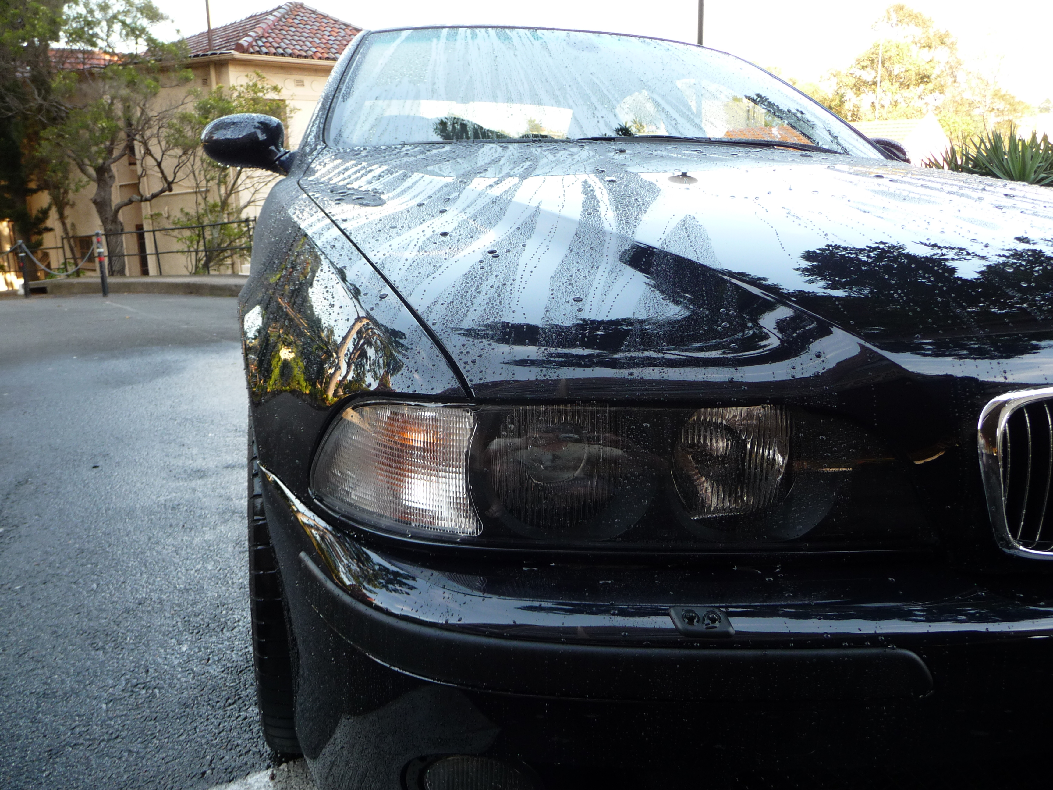 My Carbon Black bare metal respray - progress photos-m5-painted-014.jpg