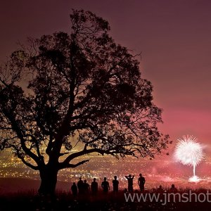 Two Trees and Fireworks at County Fair